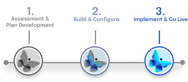 Integrator-Implementation